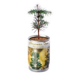 Garnier Nutrisse Creme (Intensive Coloration), Strahlendes Tiefrot (46)