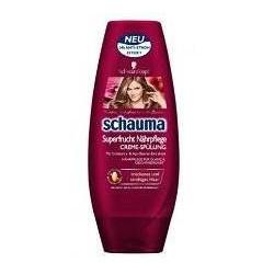 Playmobil: Drachenprinz